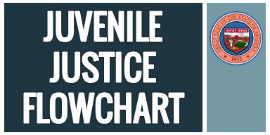 Juvenile Justice Flow Chart